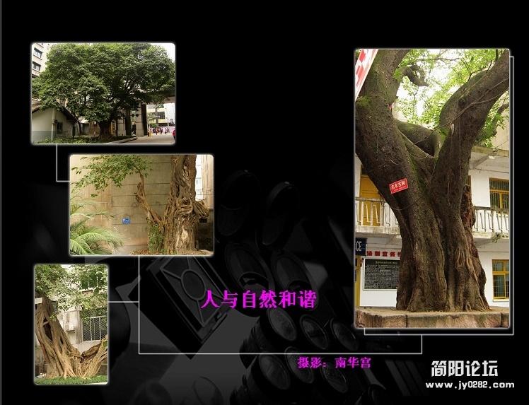 人与自然6.jpg
