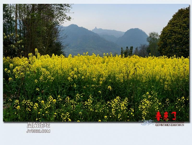青城之春——02.jpg