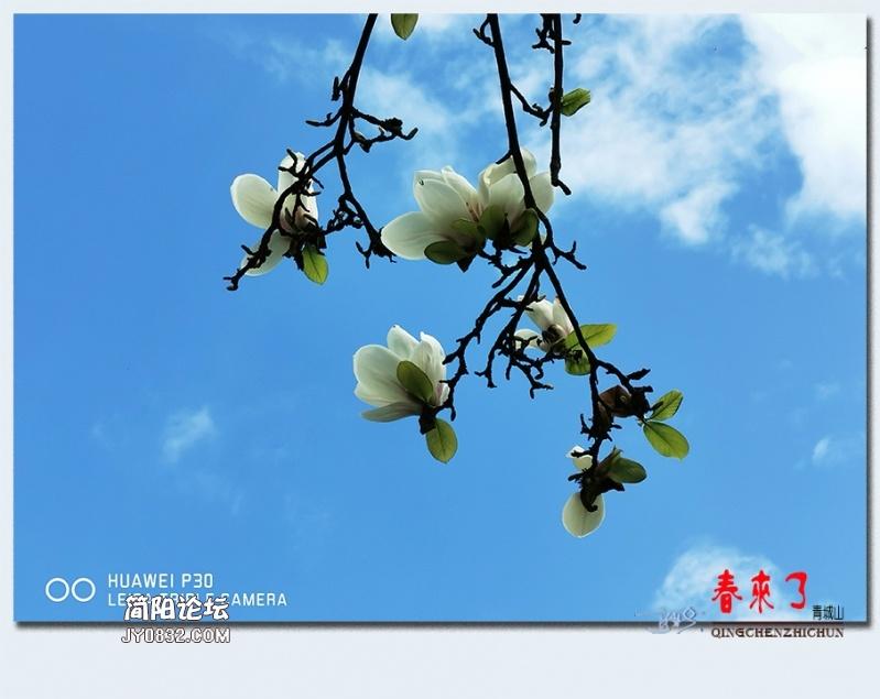 青城之春——04.jpg