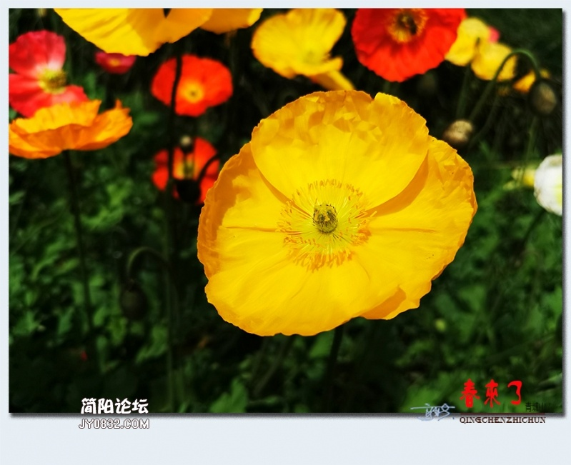 青城之春——09.jpg