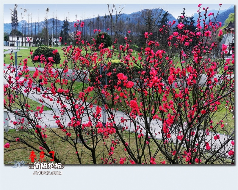 青城之春——13.jpg
