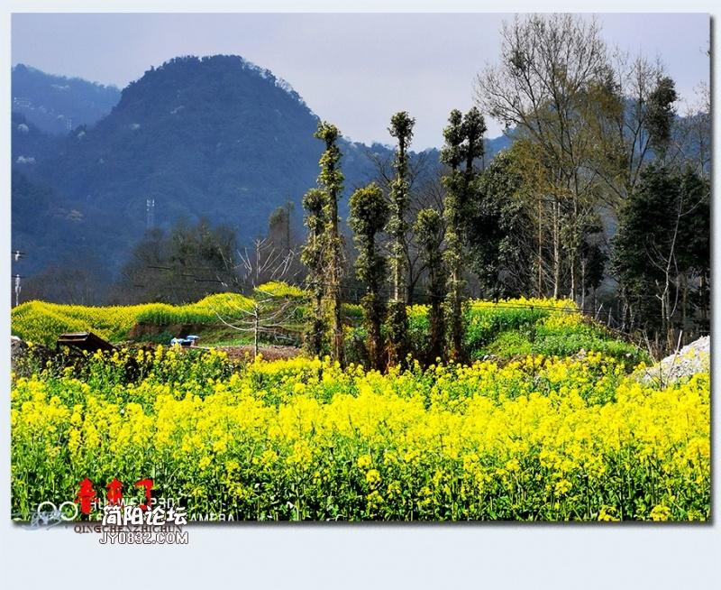 青城之春——17.jpg