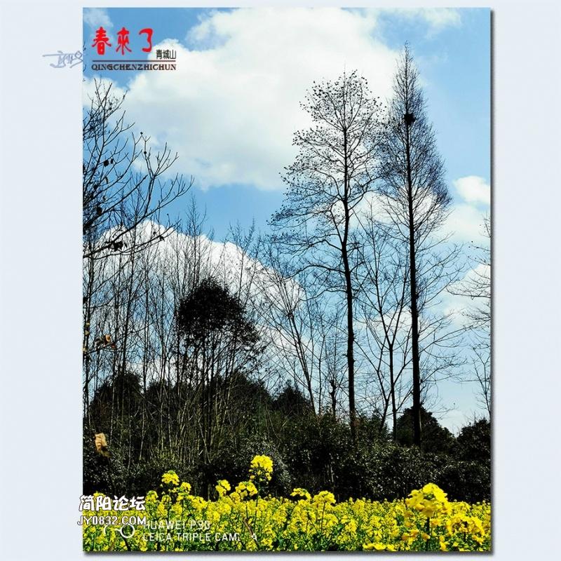 青城之春——16.jpg