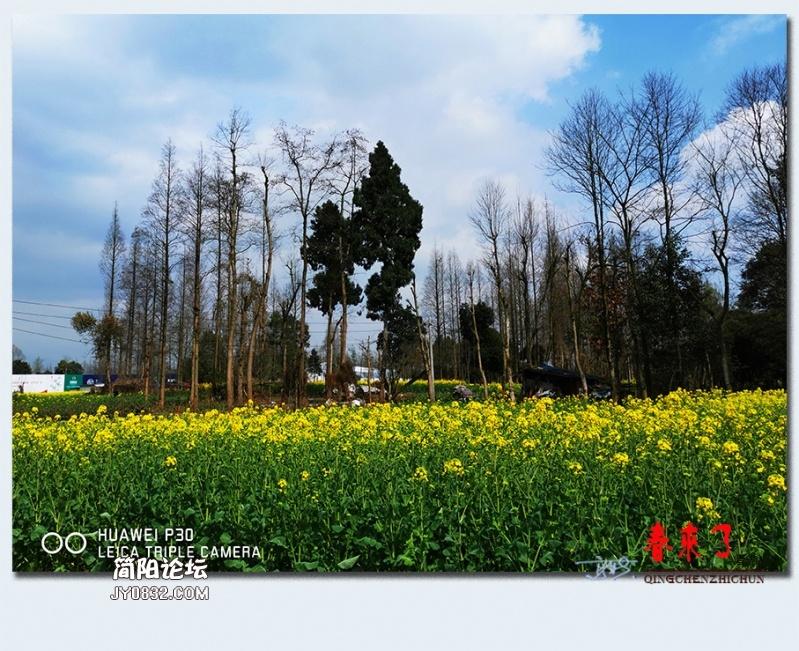 青城之春——18.jpg