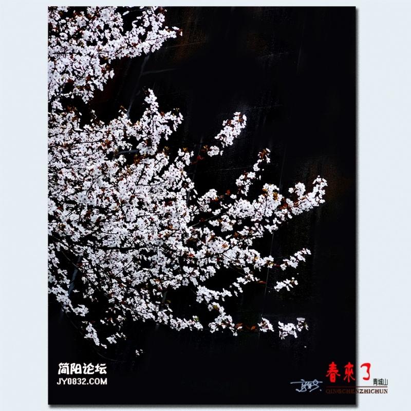 青城之春——23.jpg