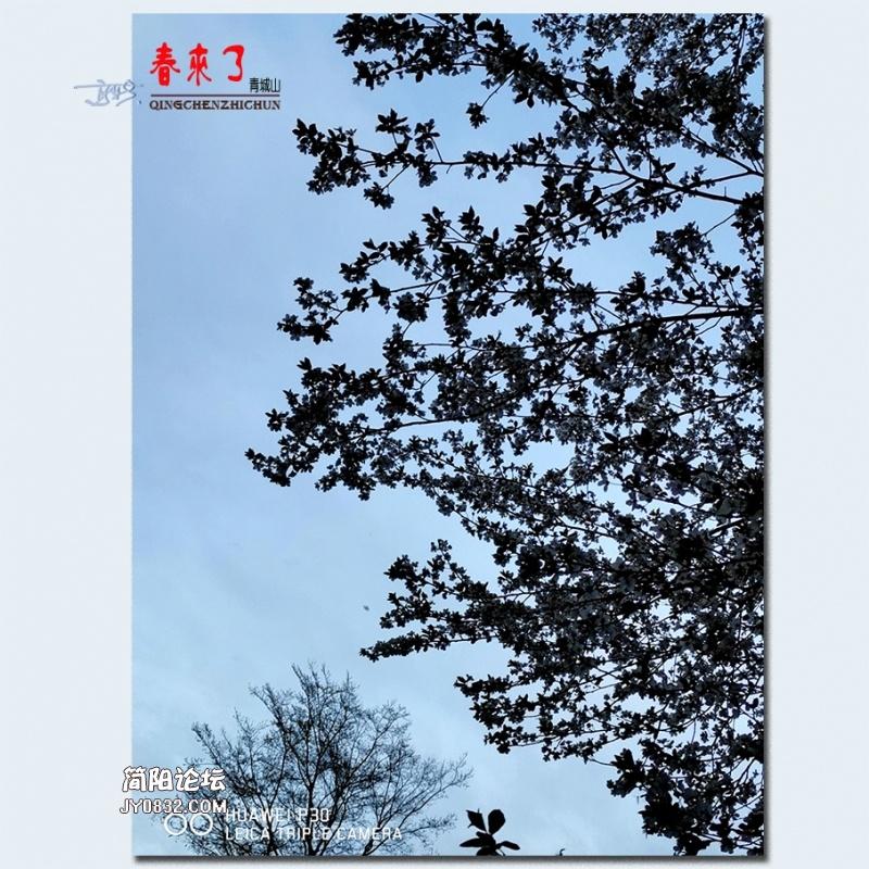 青城之春——24.jpg