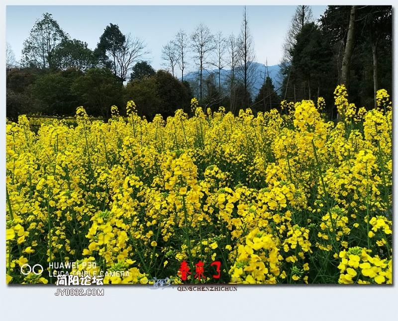 青城之春——30.jpg