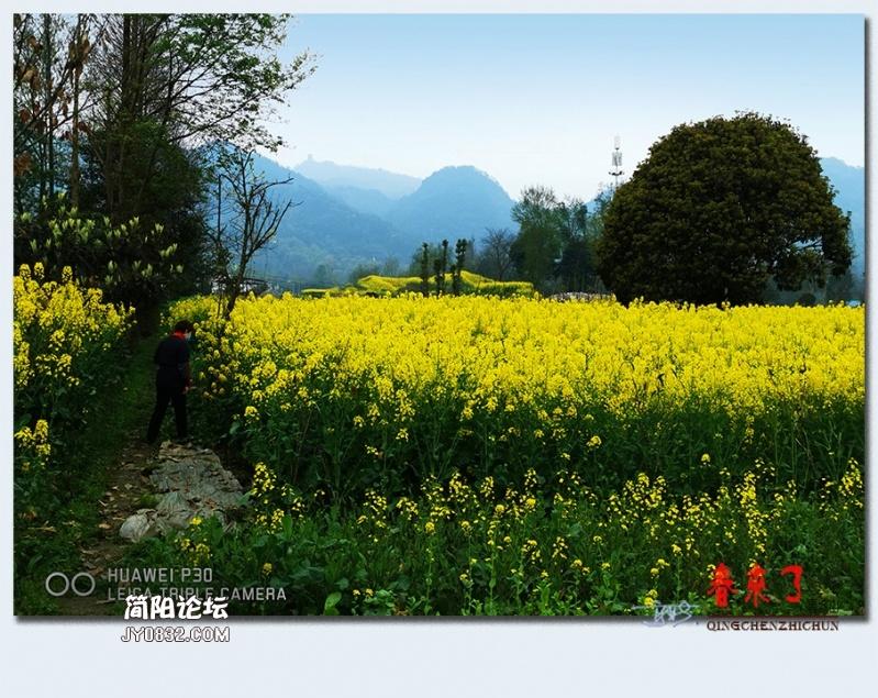 青城之春——32.jpg
