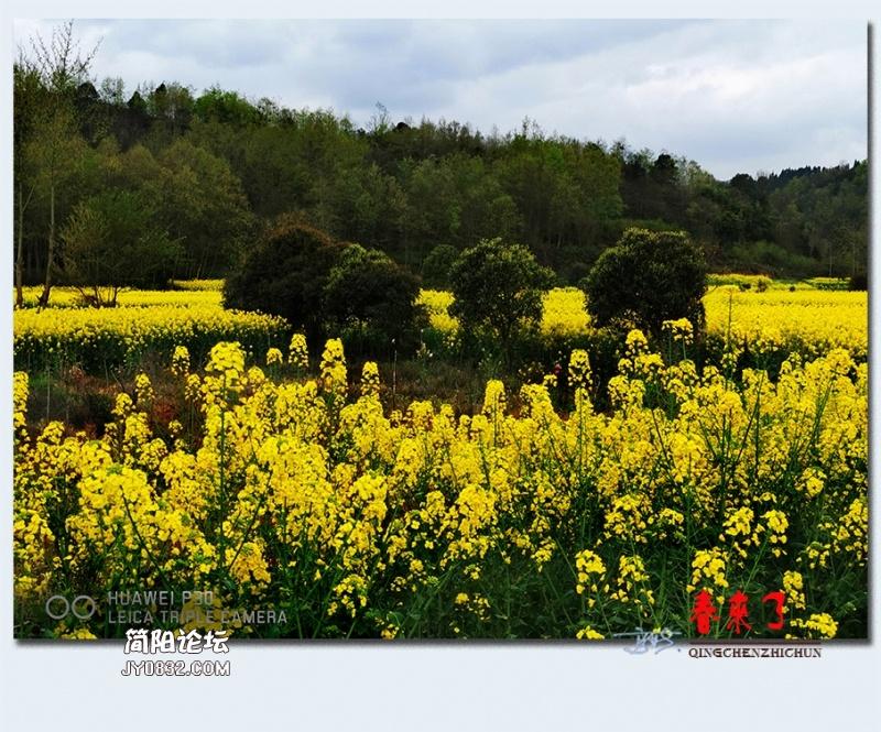 青城之春——34.jpg