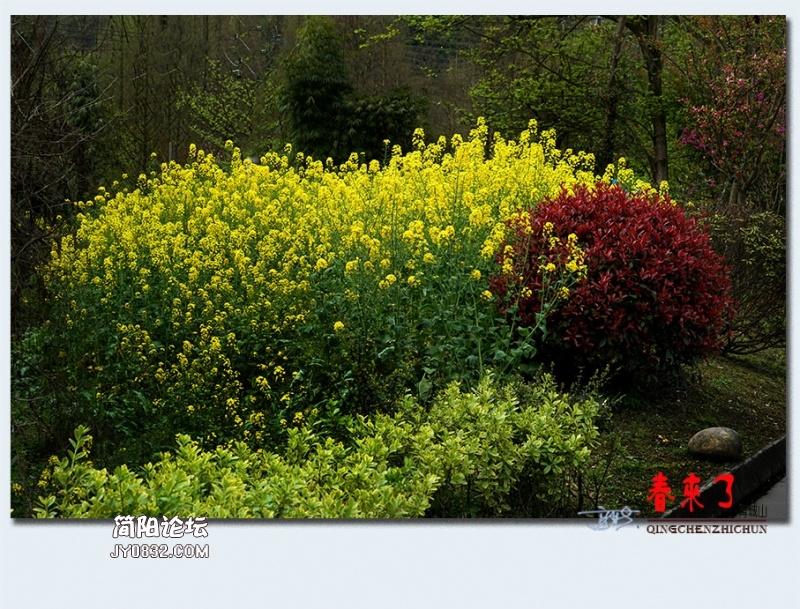 青城之春——48.jpg