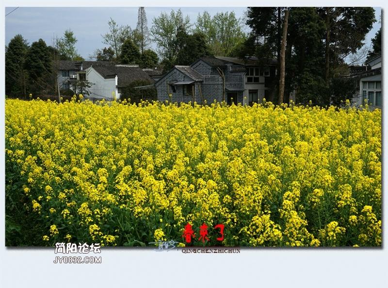青城之春——47.jpg