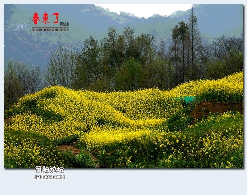 青城之春——50.jpg